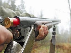 Охота в Беларуси